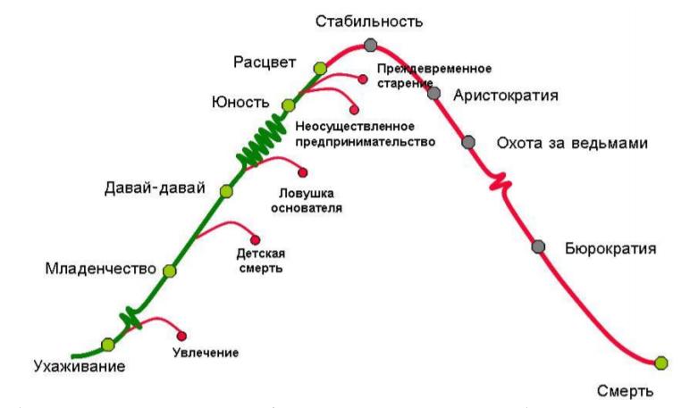 Жизненный цикл организации по Ицхаку Адизесу